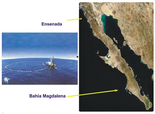 IEl recurso sardina: estudio bio-ecológico y socio-económico