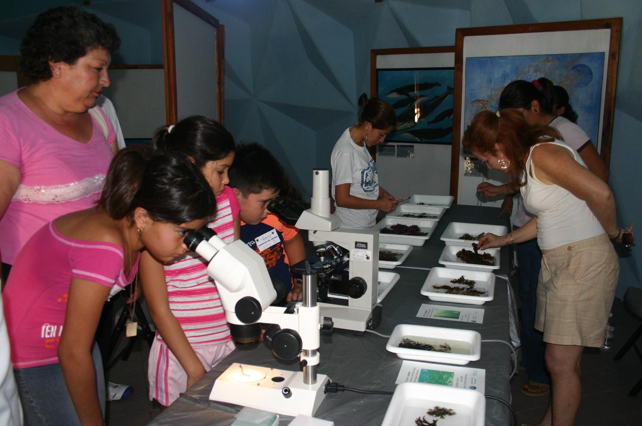 IPrograma de Acercamiento de la Ciencia a la Educación
